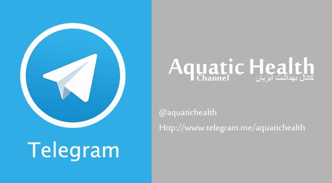 کانال سایت بهداشت آبزیان